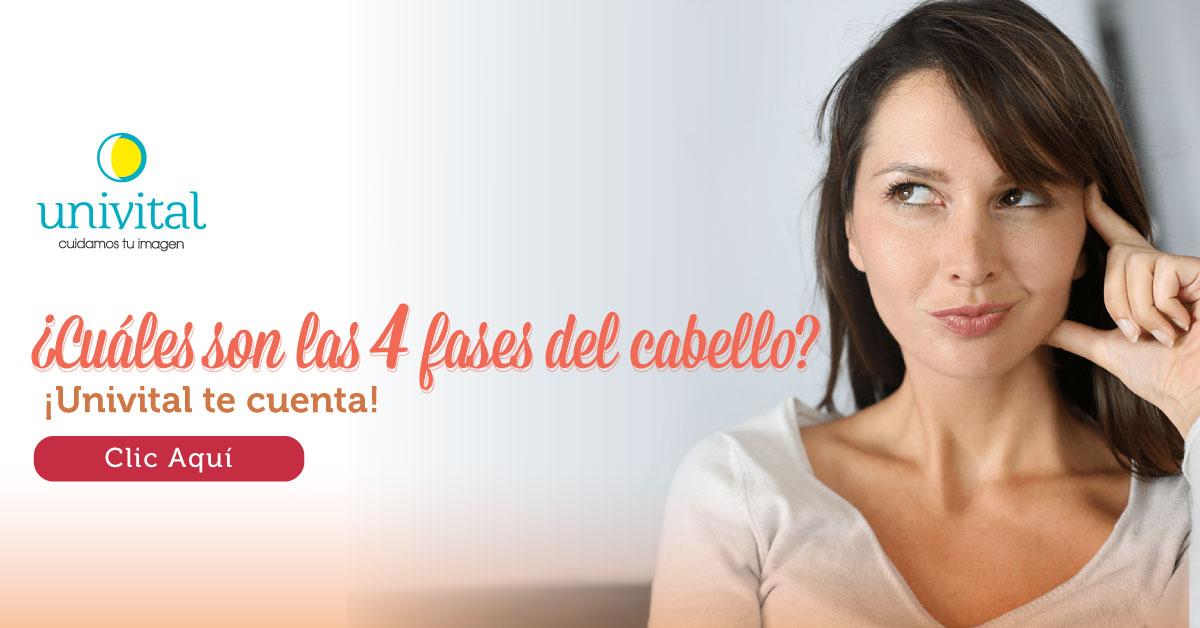 ¿Cuáles son las 4 fases del cabello? Univital te cuenta
